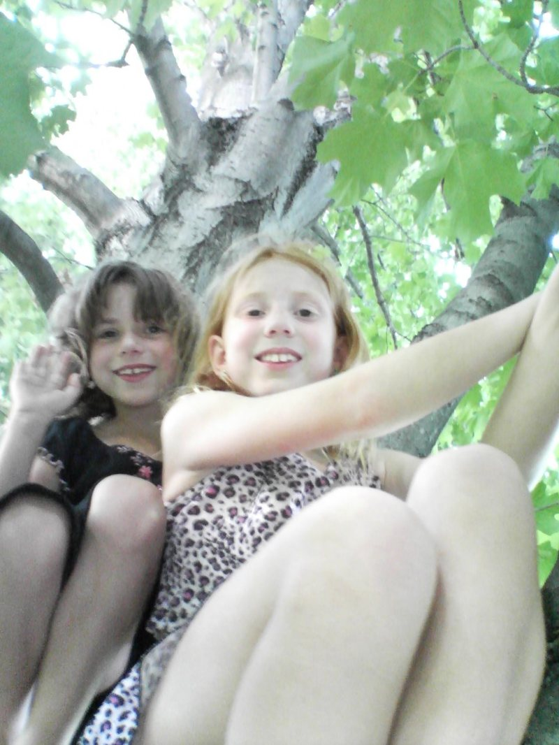 Maple Tree Fairies!