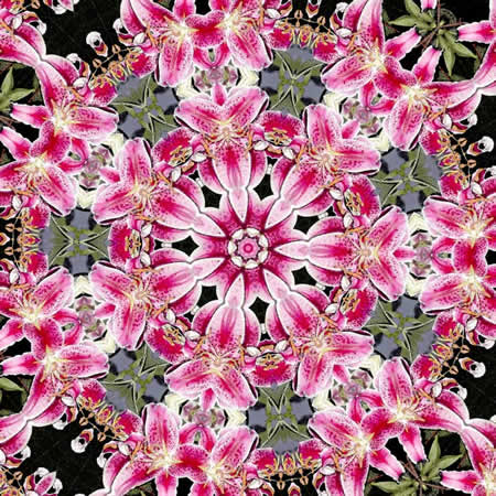 Stargazer-lily-mandala450