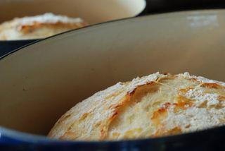 Crusty-bread-181