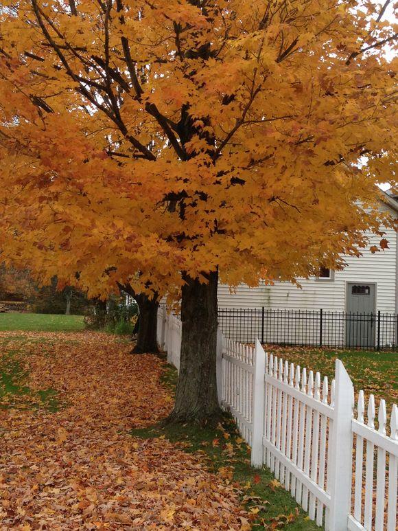 Autumn in Northeast Ohio : Part 1