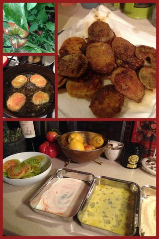 Reaping the Harvest~ Fried Green Tomatoes!