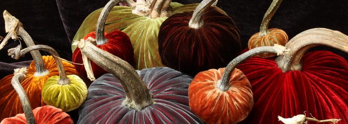 Hot-Skwash-in-Harvest-Colors
