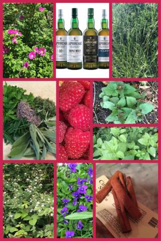 Milady's Pantry: Claire's Herbs- Wedding Eve Tea