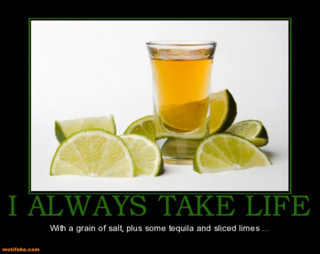 I-always-take-life-take-life-salt-tequila-lime-demotivational-posters-1339996233