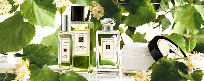 French-lime-blossom